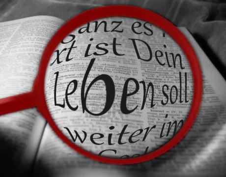 LEBENheute.com | Was wirklich wichtig ist, Antonia Mayer